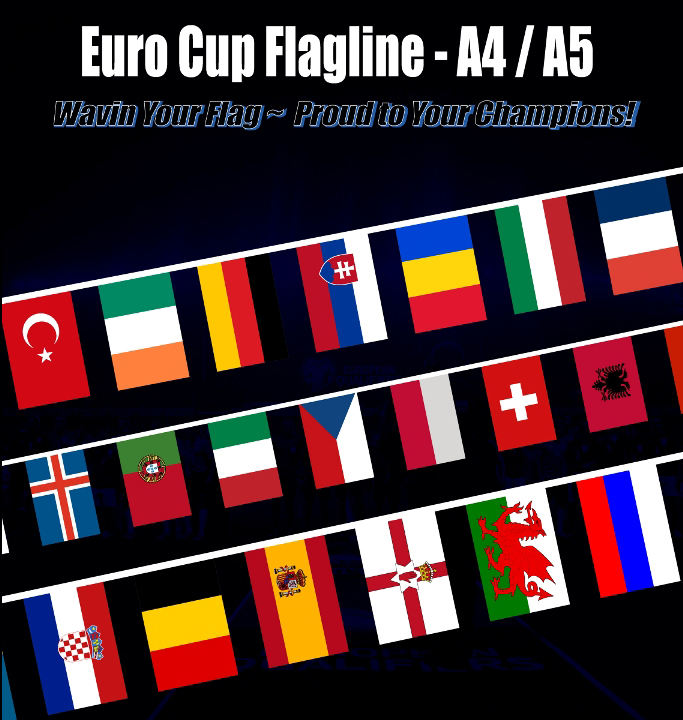 FRANCE UEFA EURO CUP 2016 Flagline Flag Buntings