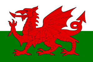 wales euro cup flag